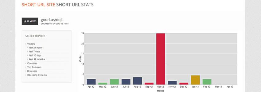 Short URL Statistics